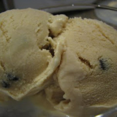 Peanut Butter Chocolate Chip Ice Cream