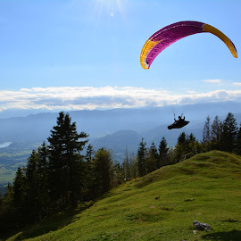 Fly like a bird by Peter Kocjan - Sports & Fitness Other Sports ( flying, paragliding, late summer )