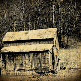 Farm Life by Renee Burmer - Buildings & Architecture Other Exteriors ( farm, farm equipment, antique, wv )