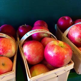 Honeycrisp by Bridget Wegrzyn - Food & Drink Fruits & Vegetables ( honeycrisp apple fall harvest )