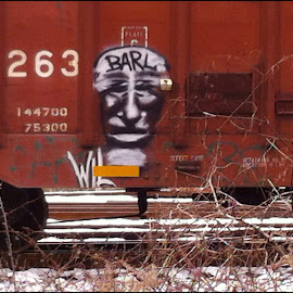 BARL by Laura Shoup - Novices Only Street & Candid ( rail graffiti, graffiti, street art, art, portrait )