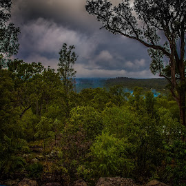 Cloudy Day by Esther Visser - Landscapes Weather ( dark, cloudy, bush, view, atmospheric )