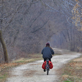 Lone Rider by Viana Santoni-Oliver - Transportation Bicycles ( person, single, prairie path, tres, one, forest, lone, road, gravel, recreation, woods, human, lane, bicycle, illinois prairie path, rider, red, bike, nature, outdoor, path, blues, outside )