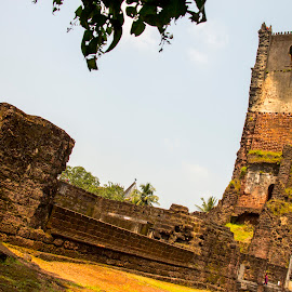St Augustine Church Ruins I by Sohil Laad - Buildings & Architecture Statues & Monuments ( tourist, goa, travel )