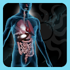 A-Z: Full Body Anatomy icon