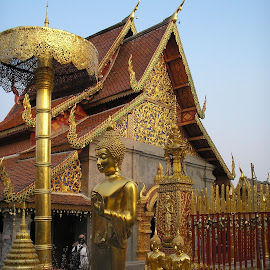 Gold Wat by Christopher Williams - Buildings & Architecture Places of Worship ( mountain, doi sathep, gold, wat )