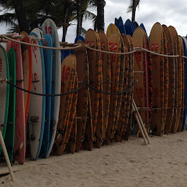 Boards Up by Jerry Heger - Sports & Fitness Surfing ( sand, surfing, beach, hawaii, paddle )
