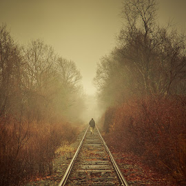 On The Right Track by David Long - People Portraits of Men ( fog, fall, train, charlie, tracks )