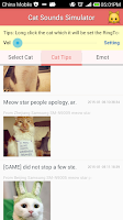 Screenshot of Cat Sounds Meow Simulator