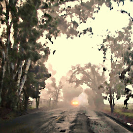 the road to work by Leslie Hunziker - City,  Street & Park  Street Scenes ( car, fog, street, trees, country )