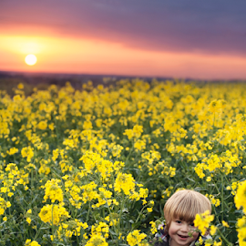Rapeseed Sunset by Chinchilla  Photography - Babies & Children Toddlers ( rapeseed, england, sunset, little boy, outdoors, cute, toddler, spring )
