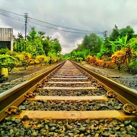 klakah railway by Dwi Haris Fitriansyah - Instagram & Mobile Other ( railway )