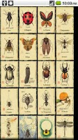 Screenshot of Tarot of Bugs