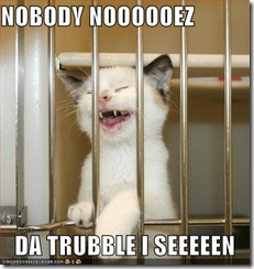 funny-pictures-nobody-knows-the-troubles-kitten-has-seen