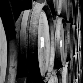 The Cellar by Tyler Hiatt - Food & Drink Alcohol & Drinks ( wine, vineyard, cellar, barrels, wood )