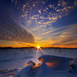 A Breath Away by Phil Koch - Landscapes Prairies, Meadows & Fields ( summer. spring, vertical, photograph, farmland, yellow, leaves, storm, love, nature, autumn, snow, flowers, flower, wind, orange, twilight, agriculture, horizon, portrait, environment, winter, season, national geographic, serene, floral, inspirational, wisconsin, natural light, phil koch, spring, sun, photography, farm, ice, horizons, rain, inspired, clouds, office, green, scenic, morning, wild flowers, field, red, blue, sunset, peace, fall, meadow, earth, sunrise, landscapes,  )