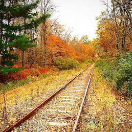 by Jody Rowe - Transportation Railway Tracks