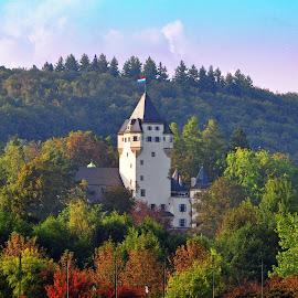 Grand-Duke's Home by Marco Bertamé - City,  Street & Park  Neighborhoods ( residence, grand-duchy, trees, forest, castle, colmar-berg, grand-duke, luxembourg )