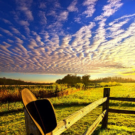 No Worries by Phil Koch - Landscapes Prairies, Meadows & Fields ( vertical, cowboy hat, photograph, fine art, yellow, travel, leaves, hat, love, sky, nature, tree, autumn, bluesky, light, flower, orange, twilight, agriculture, horizon, portrait, fence, environment, dawn, season, backlight, serene, outdoors, trees, floral, inspirational, natural light, wisconsin, ray, landscape, phil koch, sun, photography, rail, path, horizons, inspired, office, clouds, stetson, park, green, scenic, morning, shadows, wild flowers, field, red, blue, color, sunset, peace, fall, meadow, landscapephotography, beam, earth, sunrise, landscapes, hike, mist )