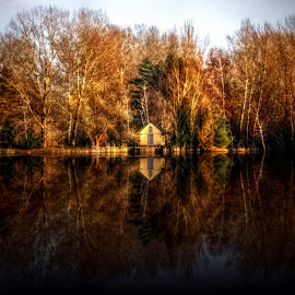 Autumn by Manuela Dedić - Landscapes Waterscapes