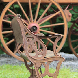 Old Bench by Michelle Vinnacombe - Artistic Objects Antiques ( old, bench, object, antique, country )