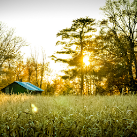 by Keri Zimmerman - Landscapes Prairies, Meadows & Fields