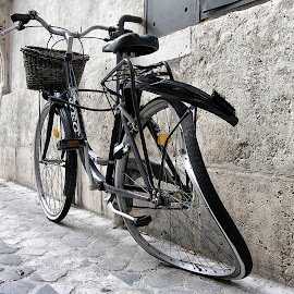 Bike by Patrizia Sapia - Transportation Bicycles (  )