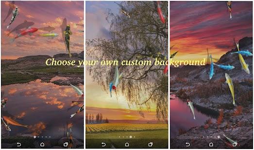 App Water Pool Live Wallpaper APK for Windows Phone