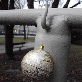 Celebration is Over by Kmetica Vesela - City,  Street & Park  Street Scenes ( decoration, street, christmas, neighborhood, artistic, amateur, grey, interesting, artistic objects, golden, photography )
