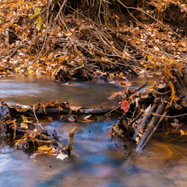 Water by Trey Walker - Novices Only Landscapes ( exposure, water, fall, leaves, long )