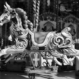 Merry Go Round by Dean Thorpe - City,  Street & Park  Amusement Parks
