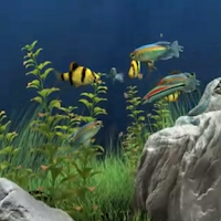 Screenshot of Dream Aquarium Live Wallpaper