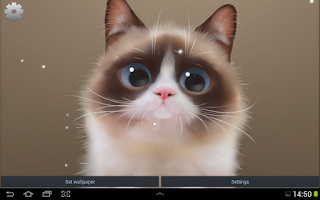 Screenshot of Shui The Kitten Lite