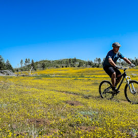 Southern California Spring by Robert Aaronson - Novices Only Sports ( low contrast, cycle, two wheels, bike, outdoors, sport, exercise, transportation, high quality, in focus, resourcemagazine, bicycle )