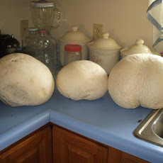 Giant Puffball Mushroom Crust Pizza