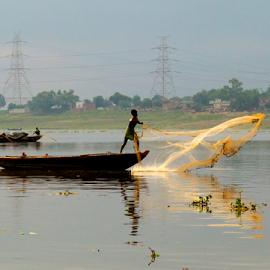 Fishing for Survival by Rajesh Kumar Gupta - City,  Street & Park  Street Scenes ( fishing, boat, net, man, river )