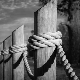 Rope Fence by KRISTOPHER HILL - Artistic Objects Other Objects ( fence, b&w, rope, dusk, rope fence )
