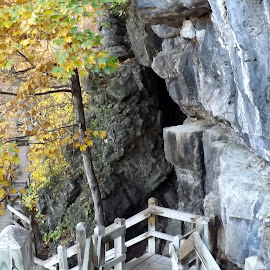 The Walkway by Paula Mathes - Nature Up Close Rock & Stone