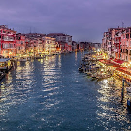Grand Canal Twilight by Chris Hall - City,  Street & Park  Night ( lights, grand, twilight, venice, canal )