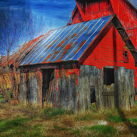 by Diane Merz - Buildings & Architecture Other Exteriors
