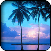 Download Android App Sea wallpapers for Samsung