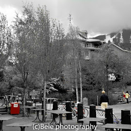 B&W by BiLal Mashookheel - City,  Street & Park  City Parks