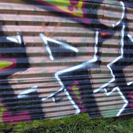 Colours & Wall by Kmetica Vesela - City,  Street & Park  Neighborhoods ( rose, graffiti, beautiful, garage, amateur, interesting, photo, black, gree, colours,  )