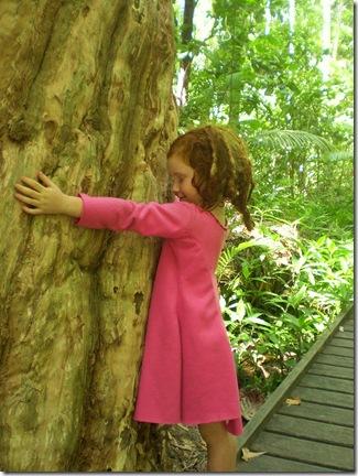 20 Treehugger