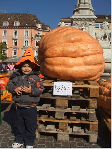 Bolzano Festa della zucca! 006