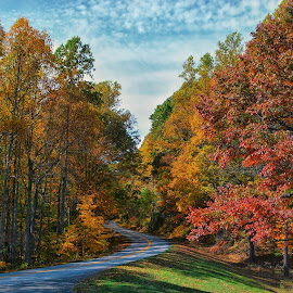 Road to Wonderland by James Gramm - Landscapes Travel ( sky, color, fall, trees, blue ridge, road,  )