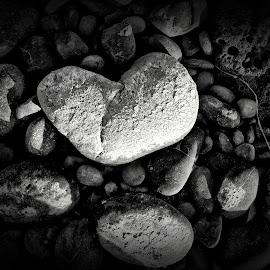 Broken by Helen Jamison - Nature Up Close Rock & Stone ( hdr, black and white, dark, river rock, rock, black )