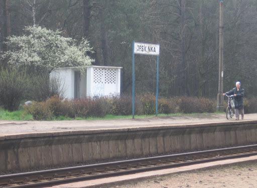 Jesionka
