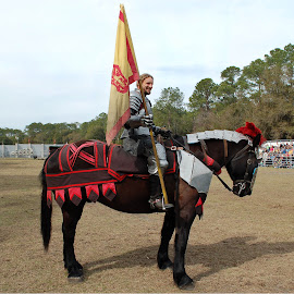 Sir Edmond by Philip Molyneux - News & Events Entertainment ( ride, flag, horse, medieval, joust, knight,  )