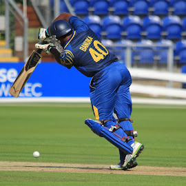 Sri Lanka Batsman by John Davies - Sports & Fitness Cricket ( new zealand 'a', john davies, cricket, swalec stadium, sri lanka 'a', cardiff )